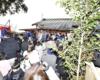 2月3日 八幡神社で豆まき。境内に入りきれないほど大勢集まりました。